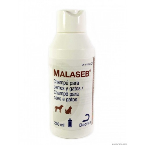 MALASEB CHAMPU 250 ML