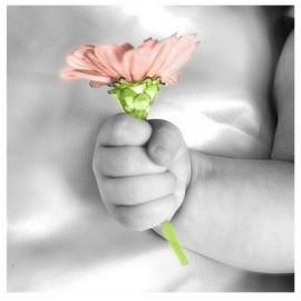 COLONIA INFANTIL